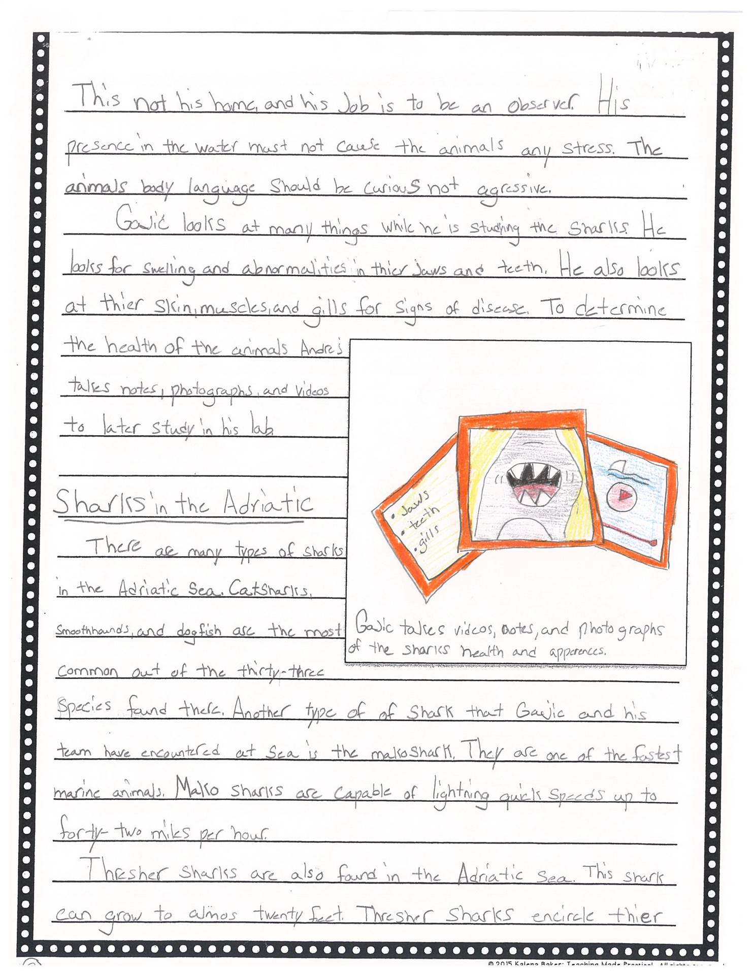 5th Grade Writing Sample